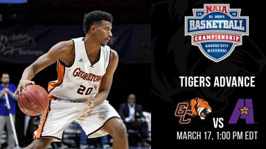 Tigers Advance to the Quarerfinals